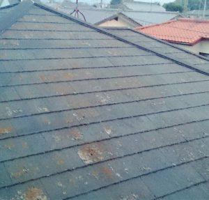 屋根の塗装のベストシーズンは?最適なリフォーム時期について