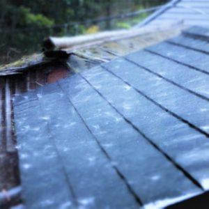 屋根塗装で雨漏り対策?塗り替える前に防水塗料や効果について知っておこう